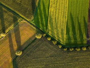 DJI Introduces Its First Agricultural Drone